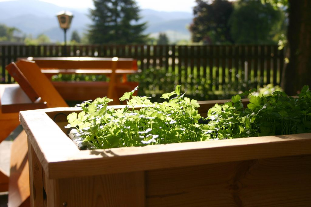 Freundlicher Gastgarten im Restaurant im Gästehaus St. Michael